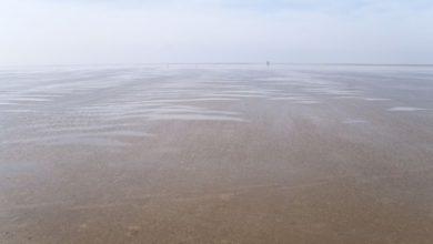 Photo of Få helende kræfter fra havet